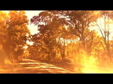 Slow TV | Music Video | Sell my Soul | McCarrs Creek Road, Sydney