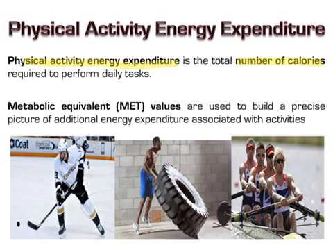 AS PE: Diet & Nutrition - Energy Intake, Expenditure and Balance