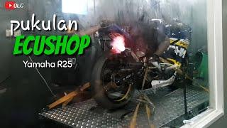 Ecushop + Quickshifter | Yamaha R25