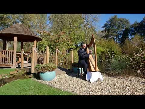Mark Levin Wedding Harpist