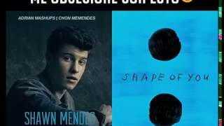 Ed Sheeran Shawn Mendes MASHUP Treat You Better And Shape Of You By Adrian Mashups