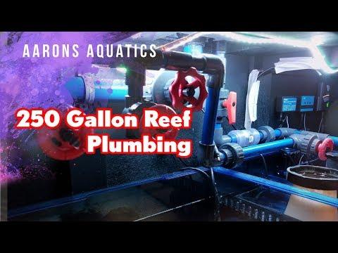 250 Gallon Saltwater Build | Part 3 - Plumbing (Sump, Manifold)
