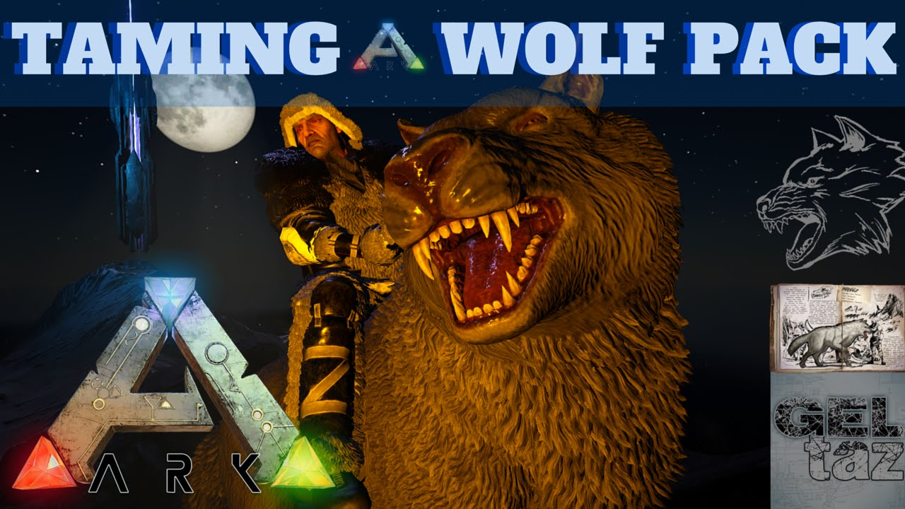 Alpha. How to tame a wolf 24