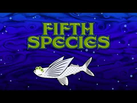 Fifth Species - City Apart (Single Edit)