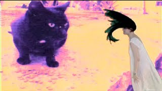 Soko Quot Destruction Of The Disgusting Ugly Hate Quot Official Video