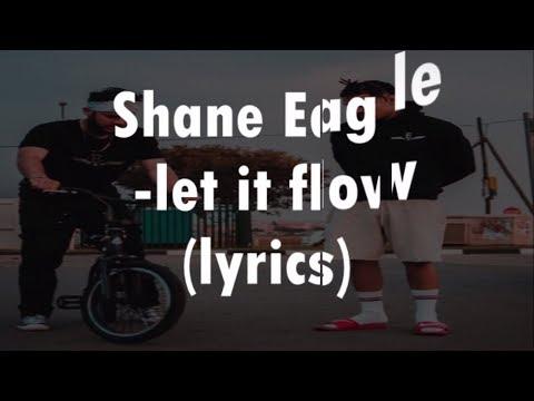 Shane Eagle - Let It Flow (lyrics) Cover