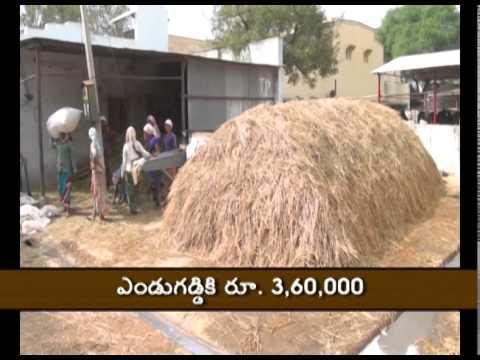 Dairy farmer's success story at Mahbubnagar