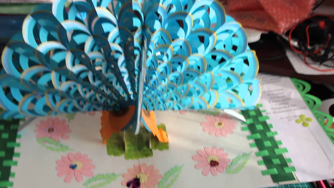 peacock pop up card youtube