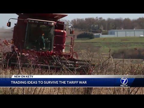 Farmers speak out on trade wars