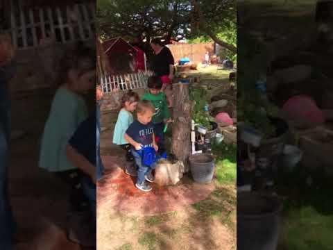Pumpkin Pie with Parents at Blake's school - 2017