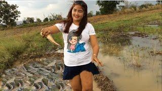 Amazing beautiful girl Fishing in Cambodia - How to Fishing at Battambang - By New York ( part 079)