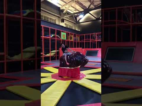 Indoor Playground Equipment Factory - Hot Mechanical Bull Sport