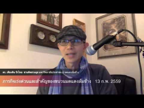 ดร.เพียงดิน ชวนคิดชวนลุย 2016-02--14 ตอน