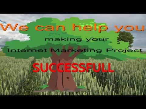 Improve Website Ranking - SEO Consulting Team
