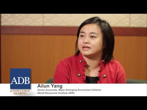 Sustainable Asia Leadership Program: Ailun Yang