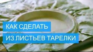 видео одноразовые пластиковые тарелки