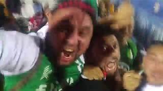 بالفيديو.. فرحة هستيرية لمشجع مصري مع ركلات ترجيح الجزائر - الشباك الرياضي