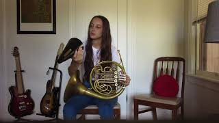 Introduction to the Horn