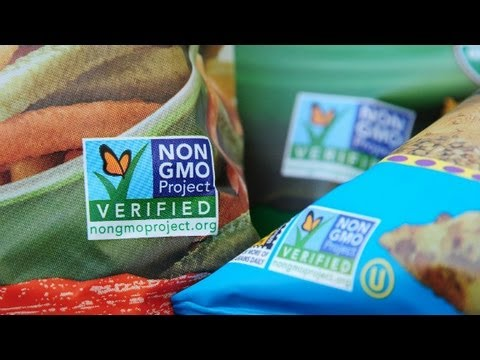 Despite FDA approval, many distrustful of GMOs