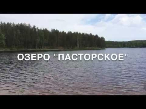Участок у озера 22 сотки в 17 км от КАД по Выборгскому шоссе СПб
