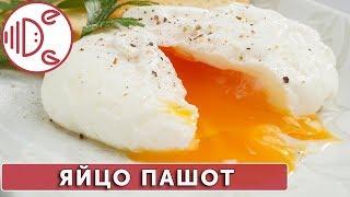 Яйцо пашот | Готовим вместе - Деликатеска.ру