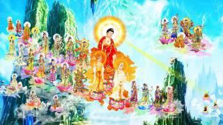 Bài kệ của ngài Liên Trì & Tịnh Am về niệm Phật -Tu là chịu thiệt thòi --  Thích Chân Hiếu 2008