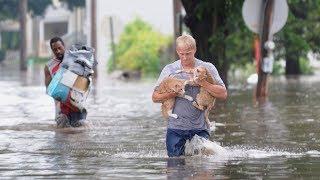 Следы Великого потопа в литературе 19 века. Великий потоп и его свидетельства.