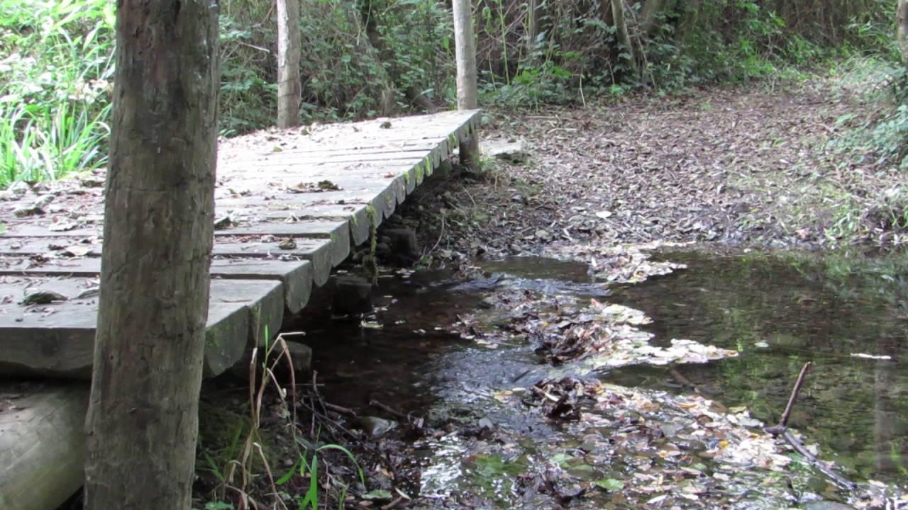 Fabriquer Un Petit Pont De Bois petit pont de bois