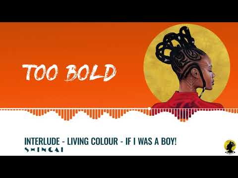 SHINGAI - Interlude (Living Colour - If I Was a Boy)