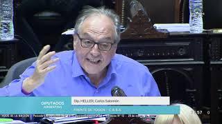 29-01-2020 - Sesión Especial - Carlos Heller – Restauración de la Sostenibilidad de la deuda pública
