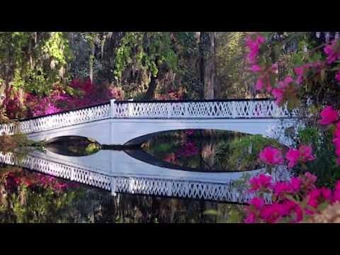West Ashley Flyover, Take a Tour, Charleston, SC