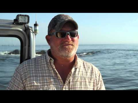 Visit Jacksonville Local Fishing Expert, Captain Dave Sipler