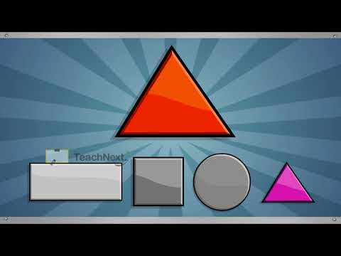 CBSE 1 Mathematics Understanding Shapes and Patterns Same Shape and Size   1