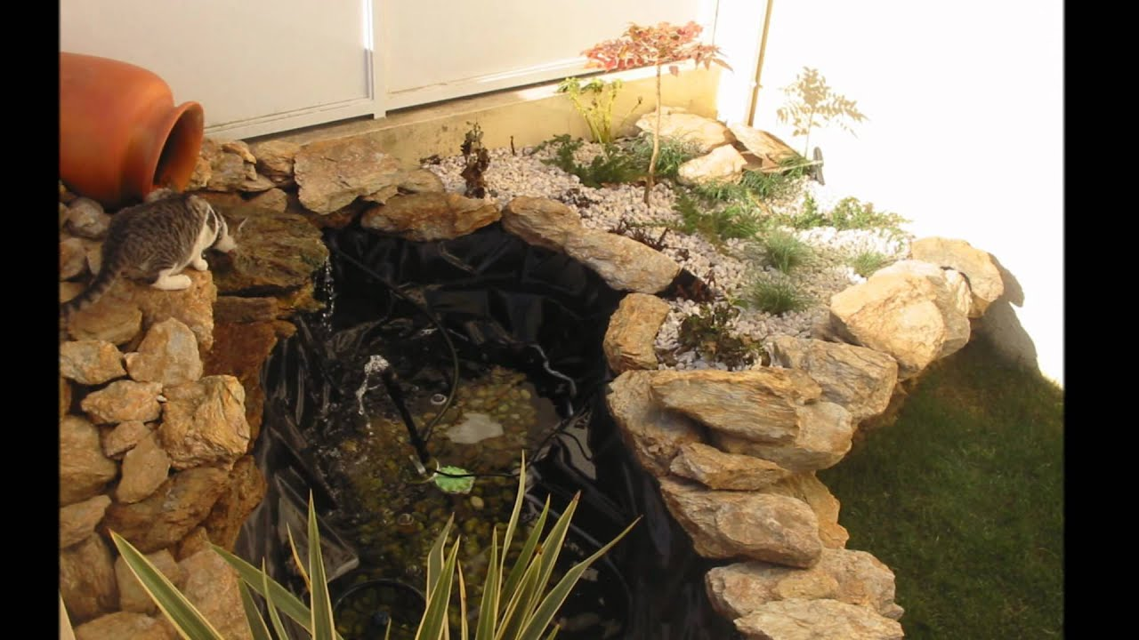 Criao de jardim com lago de tartarugawmv  YouTube