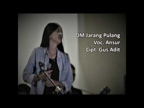 OM Jarang Pulang Ft. Ansur - Baper (Video Lirik)