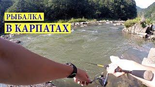 Рибалка зі Спінінгом на Гірській Річці #1 Яремче. Ловля Голавля.