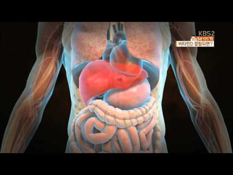 5분 건강 톡톡 비타민D 결핍이 유방암 부른다