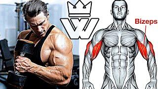 MASSIVE ARM WORKOUT | TOP-10 Exercises