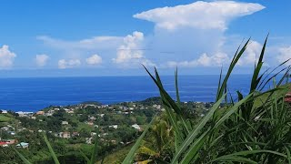 🇻🇨Happy Independence Day St Vincent and the Grenadines🇻🇨