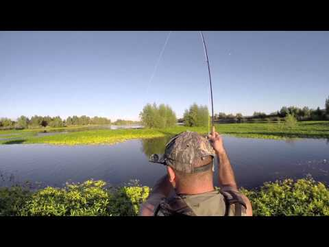 Gila trout fly fishing doovi for Gila river fishing