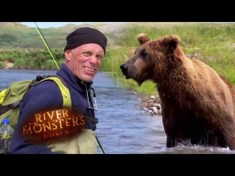Face To Face With A Bear   River Monsters