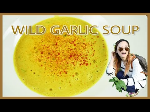 Wild garlic curry soup with ginger and coconut milk small growers #1 野蒜椰奶咖喱湯