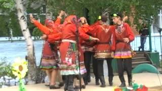 Куркинский СДК   День деревни
