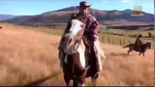 حكايا سفر:: الرحالة محمد الجمعة يروض حصان بري في الإكوادور