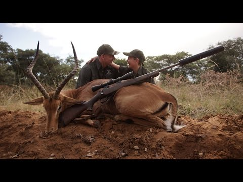 Impala hunt in South Africa.
