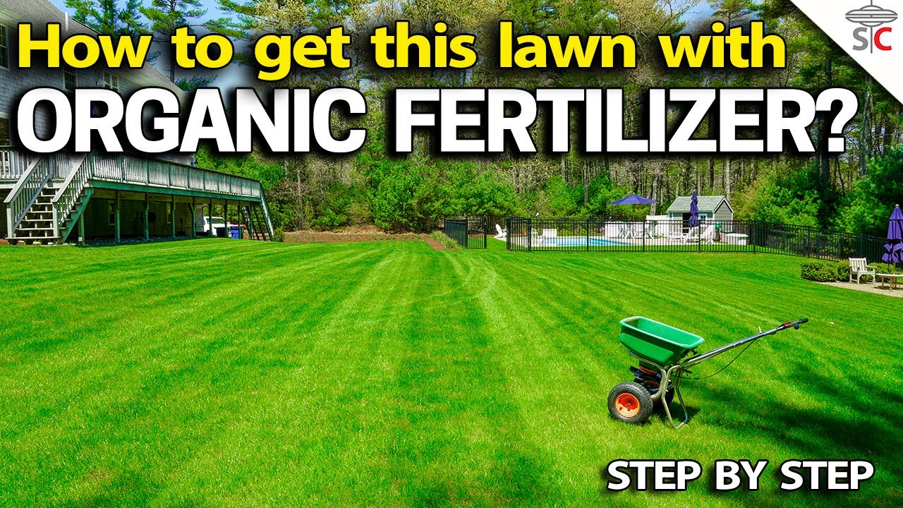 organic lawn fertilizer - stepstep how to get results