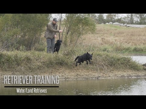 Land/Water Retriever Training Drills with Brookstone Kennels