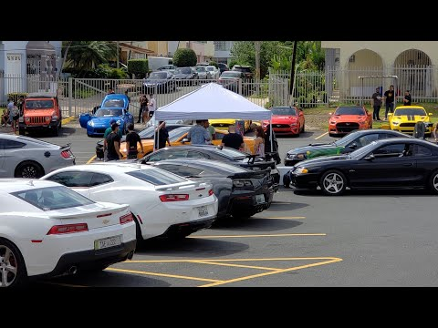 Domestics vs Imports Rally: Puerto Rico