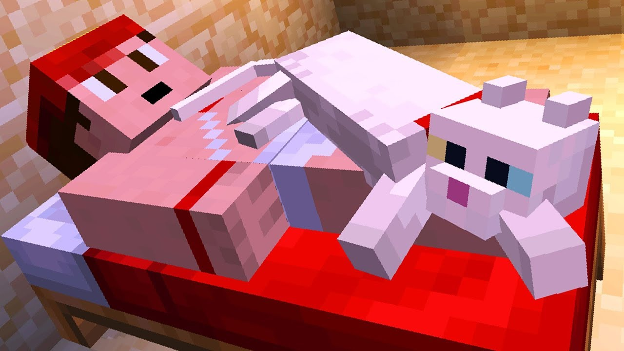 Everything About Cats in Minecraft