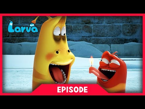 LARVA - FLARE | Cartoon Movie | Cartoons For Children | Larva Cartoon | LARVA Official